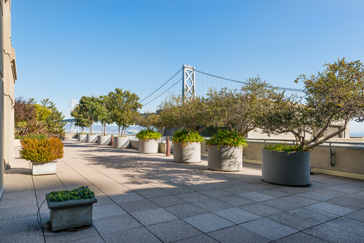 Listing 4907 : 76  Collins Street, San Francisco, CA, 94118  (photo 16)
