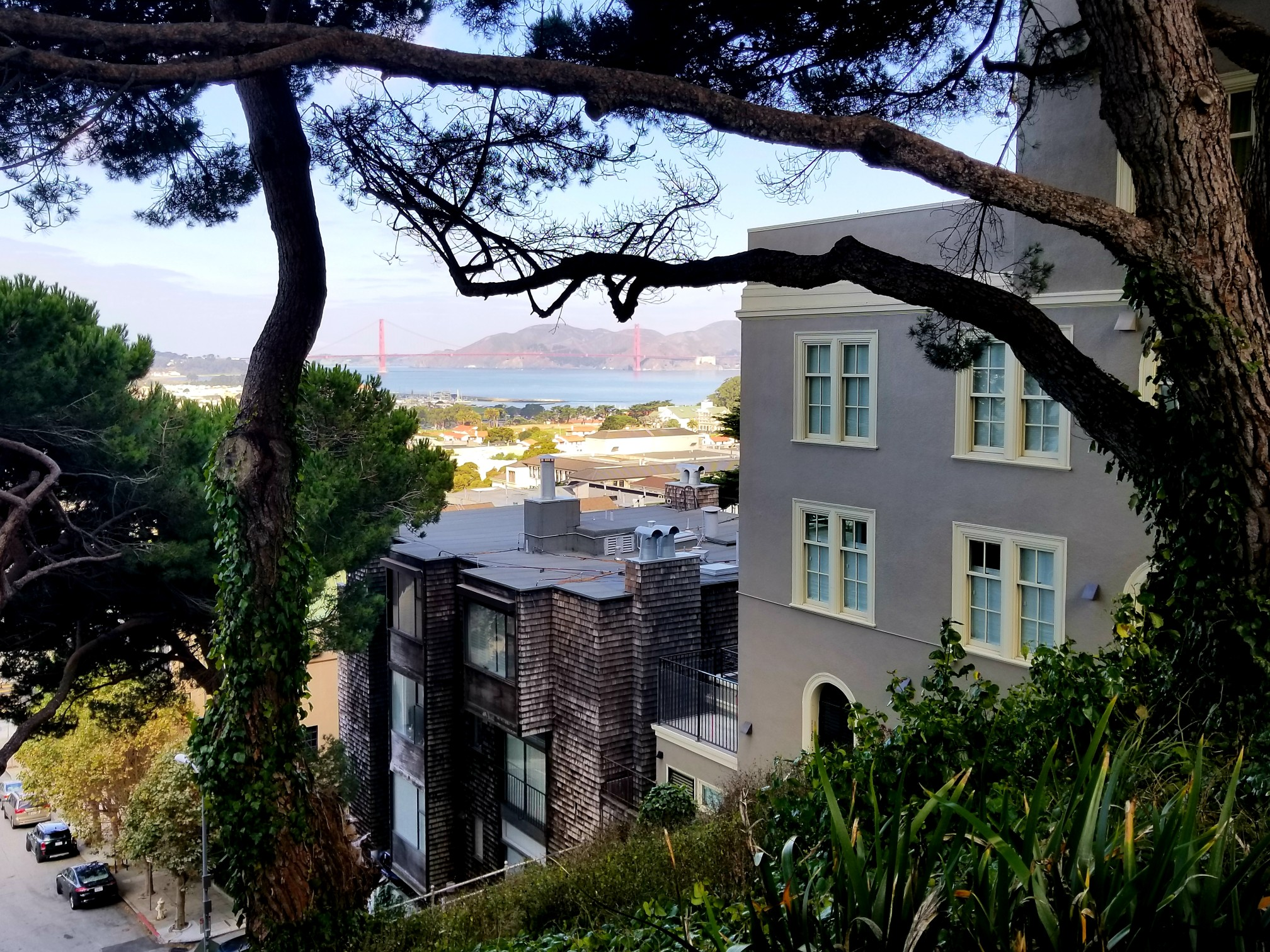 Listing 5430 : 27  Day Street, San Francisco, CA, 94110  (photo 16)
